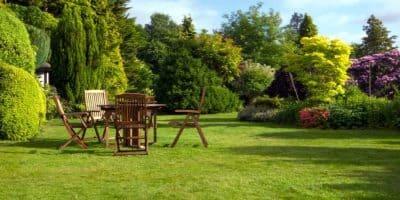 газон для отдыха