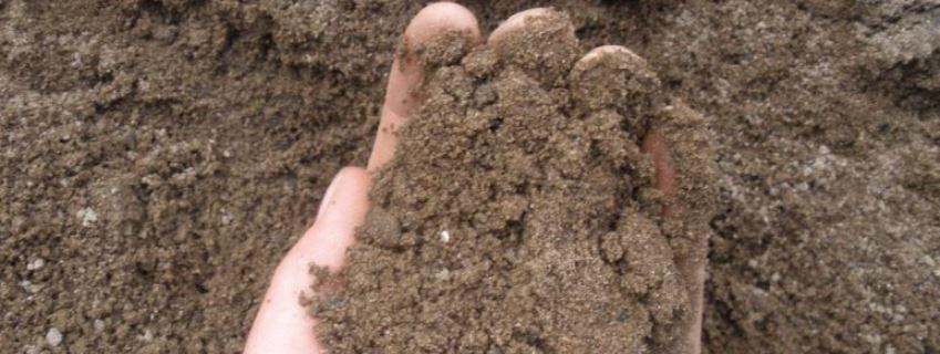 супесчаная почва