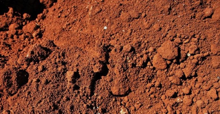 Бурые почвы