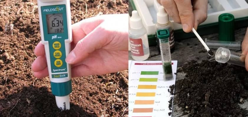 определение кислотности почвы специальными средствами