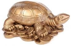 черепаха в фэн шуй