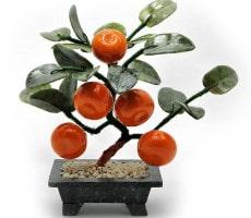 мандариновое дерево фэн шуй