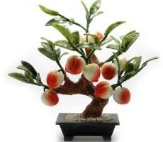персиковое дерево фэн шуй