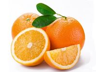 цитрусовые, хранение в холодильнике продуктов