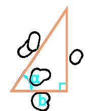 площадь прямоугольного треугольника через катет и угол - онлайн калькулятор