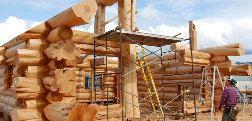 дерево для строительства дома