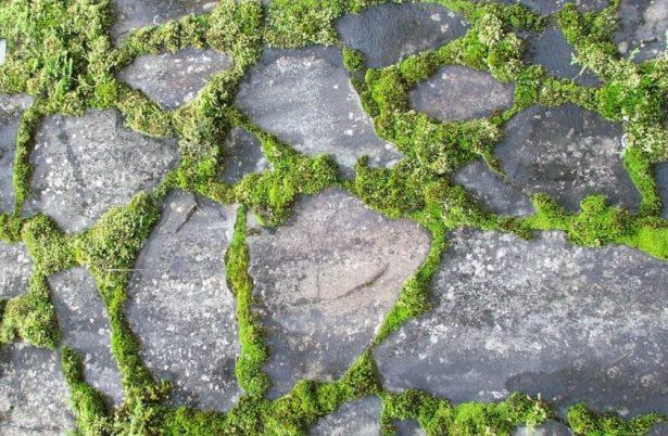 как искусственно состарить камень