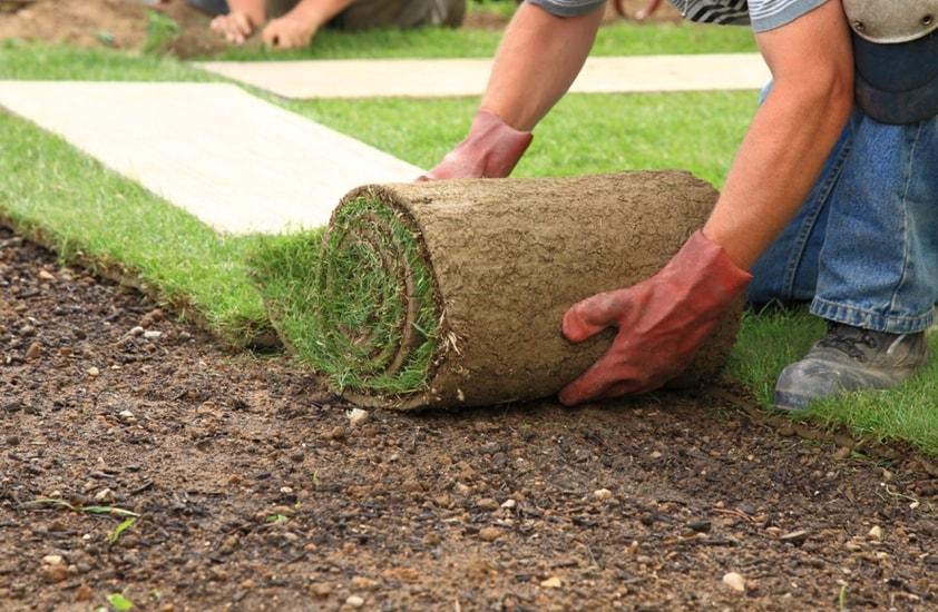 Как укладывать рулонный газон