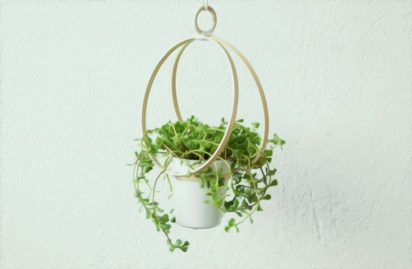 подвес для комнатных растений из пялец своими руками